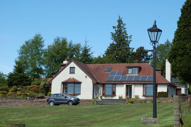 Thumbnail Detached house for sale in Pictfield, Blairgowrie
