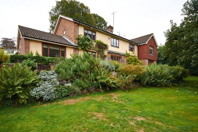 Detached house to rent in Uvedale Road, Oxted