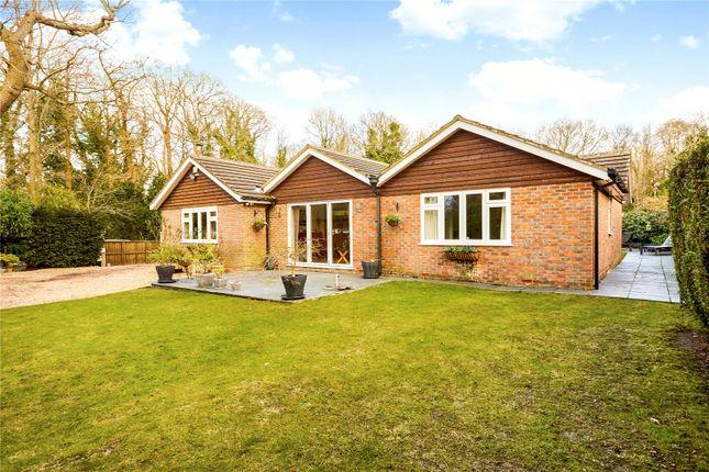 Thumbnail Detached bungalow for sale in Langton Green, Tunbridge Wells, Kent
