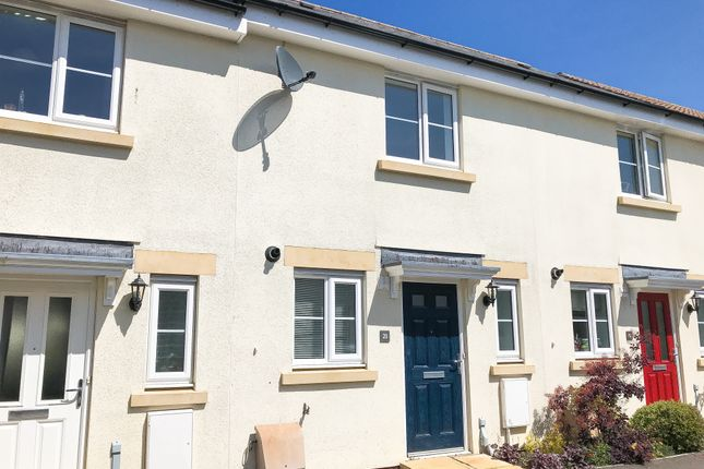 Terraced house to rent in Tigers Way, Axminster