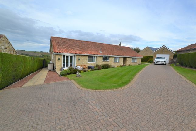 Thumbnail Detached bungalow for sale in Newton-On-The-Moor, Morpeth, Northumberland