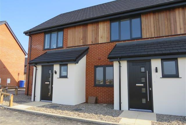 Thumbnail Property to rent in Moleyns Close, Lowestoft