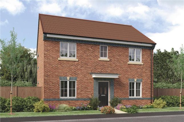 "Thumbnail Detached house for sale in ""Buchan Da"" at Sophia Drive, Great Sankey, Warrington"