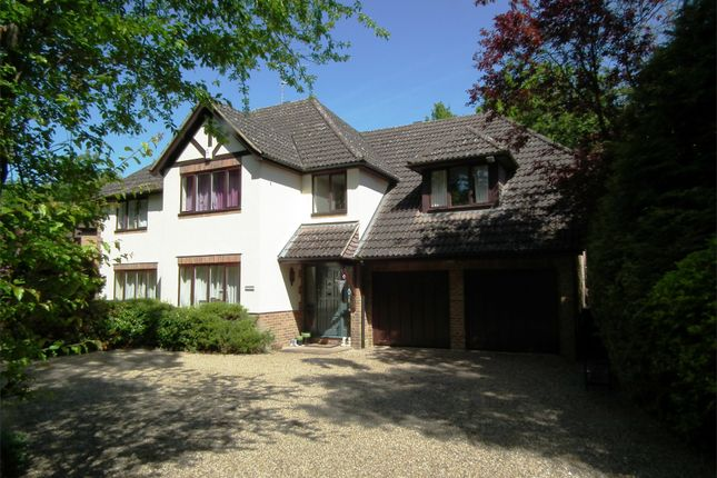 Thumbnail Detached house to rent in Pyrford Woods, Pyrford, Woking