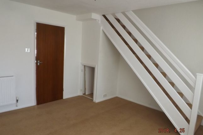 Thumbnail Semi-detached house to rent in Walnut Way, Barnstaple