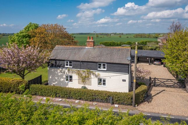 Thumbnail Cottage for sale in Great Oakley, Harwich, Essex