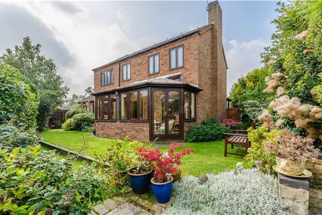Thumbnail Detached house for sale in Johns Close, Fowlmere, Nr Royston