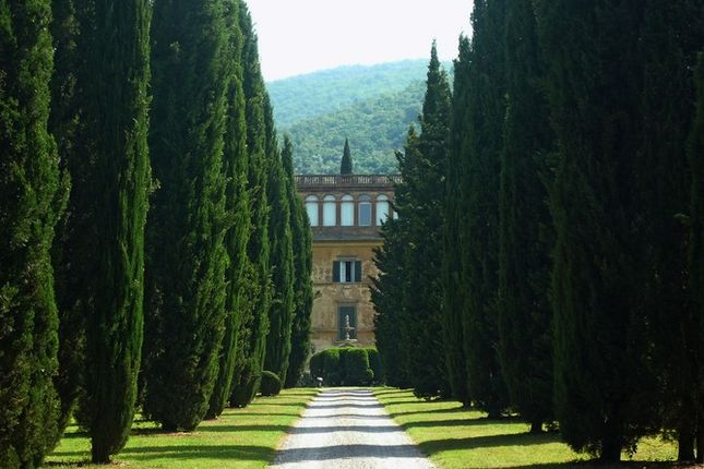 16 bed villa for sale in 52044 Cortona, Province Of Arezzo, Italy