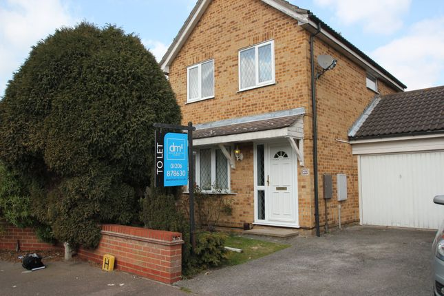 Thumbnail Detached house to rent in Chinook, Highwoods, Colchester