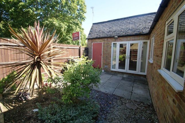 Thumbnail Semi-detached house to rent in Florence Court, Andover
