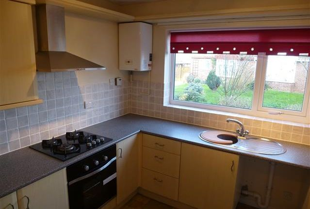 Thumbnail Property to rent in Strowgers Way, Kessingland, Lowestoft