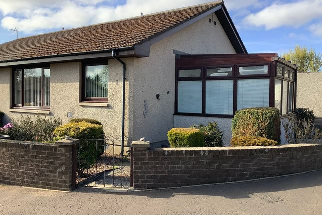 2 bed semi-detached bungalow for sale in Dunrossie Terrace, Montrose DD10