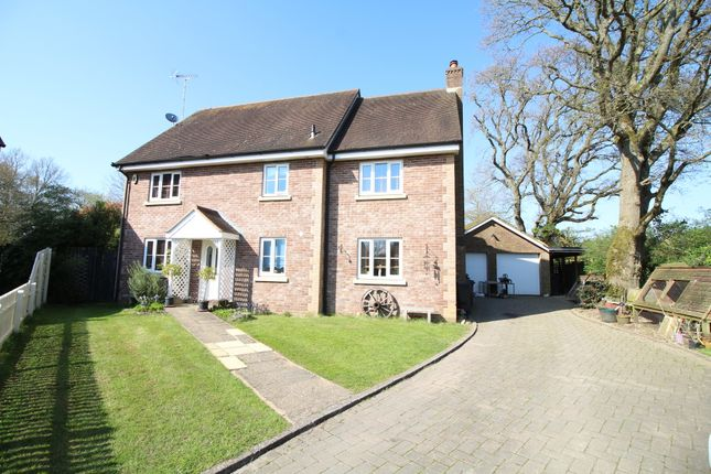 Thumbnail Detached house for sale in Marsh Lane, Poole