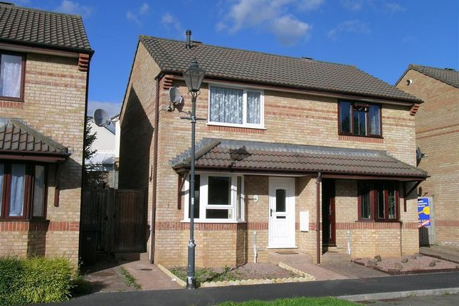 Thumbnail Semi-detached house to rent in Juniper Court, Barnstaple