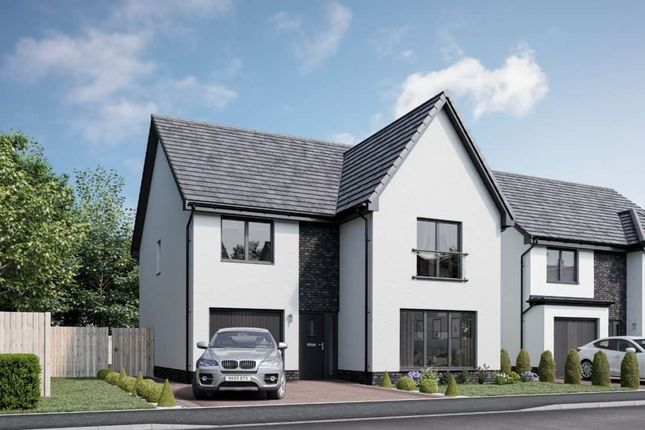 """Thumbnail Detached house for sale in """"Hutton"""" at Church Place, Winchburgh, Broxburn"""