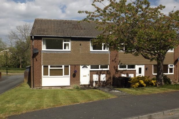 Thumbnail Property to rent in Lincoln Grove, Killinghall, Harrogate