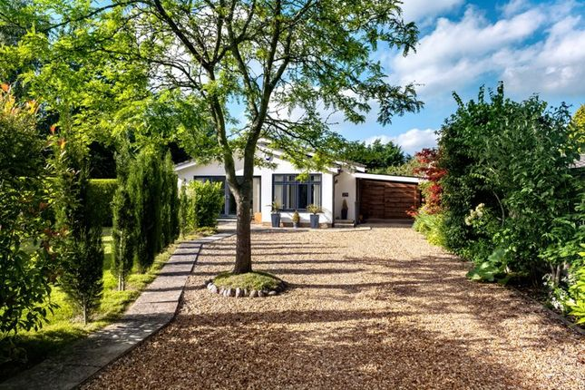 Thumbnail Detached bungalow for sale in Thorpe Road, Longthorpe Village