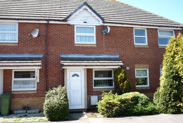 Thumbnail Terraced house to rent in Ivory Close, Faversham, Kent.