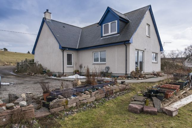 Thumbnail Property for sale in Ruifour, Kiltarlity, Beauly