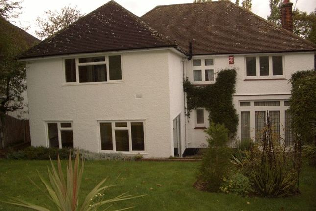 Thumbnail Detached house to rent in Limes Avenue, London