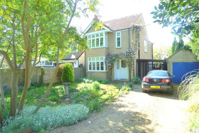 Thumbnail Detached house to rent in Langley Road, Langley, Berkshire