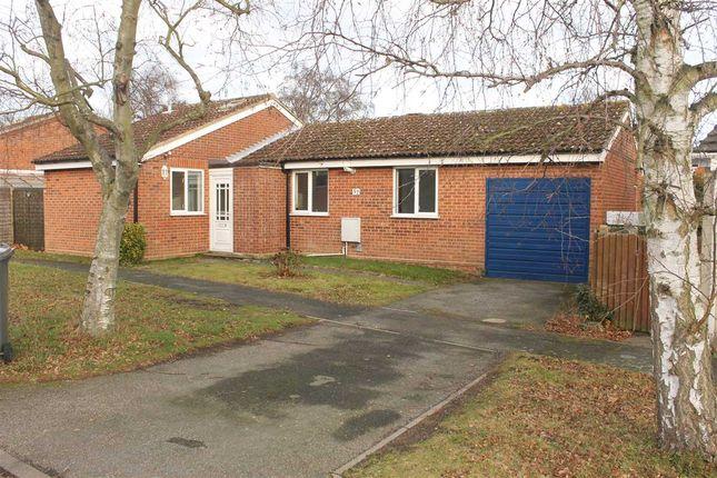 Thumbnail Bungalow to rent in Coopers Road, Martlesham Heath, Ipswich