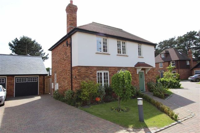Thumbnail Semi-detached house for sale in Banwell Place, Woburn Road, Heath And Reach