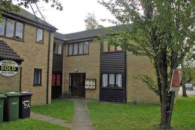Thumbnail Studio to rent in Somerville, Werrington, Peterborough