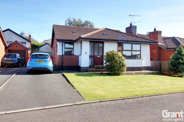 Thumbnail Detached bungalow for sale in The Chanderies, Greyabbey