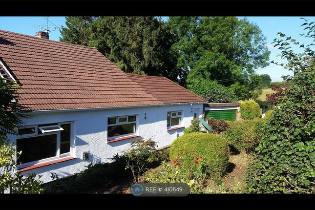 Thumbnail Detached house to rent in Manson Lane, Monmouth
