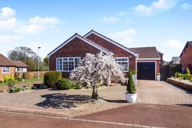 Thumbnail Bungalow for sale in Sweethope Dene, Morpeth