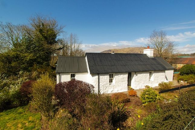 Thumbnail Cottage for sale in Taynuilt, Argyll