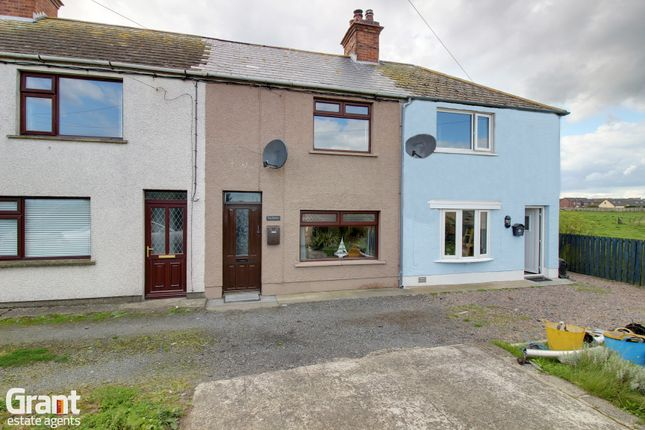 Thumbnail Terraced house for sale in Harbour Road, Portavogie