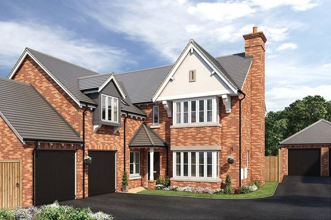"Thumbnail Detached house for sale in ""The Ramsey"" at Cypress Road, Rugby"