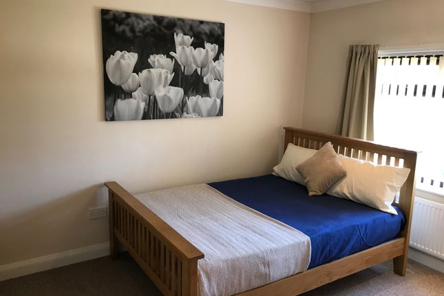 Thumbnail Shared accommodation to rent in The Grove, Wheatley Hills, Doncaster