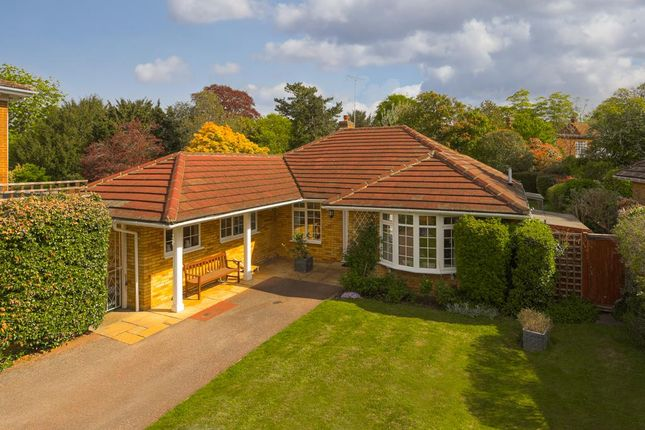 Thumbnail Detached bungalow for sale in The Oaks, Epsom