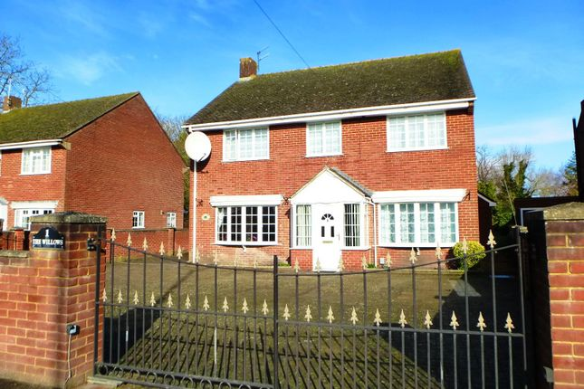 Thumbnail Property to rent in The Willows, Netherhampton Road, Salisbury