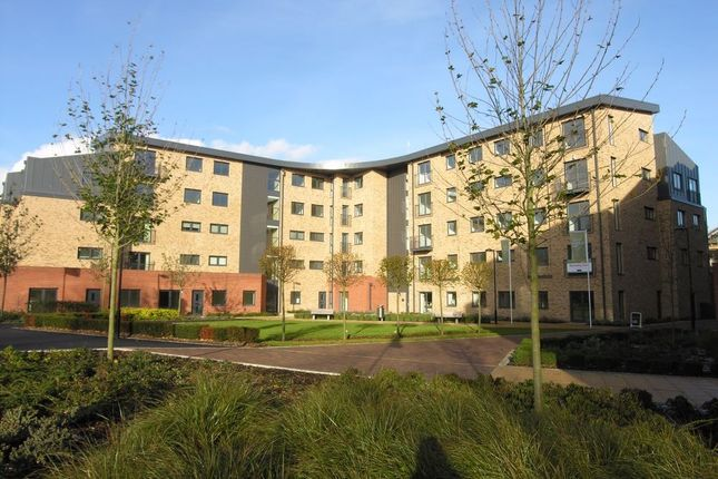 Thumbnail Flat to rent in Hawkins Court, Huntingdon, Cambs