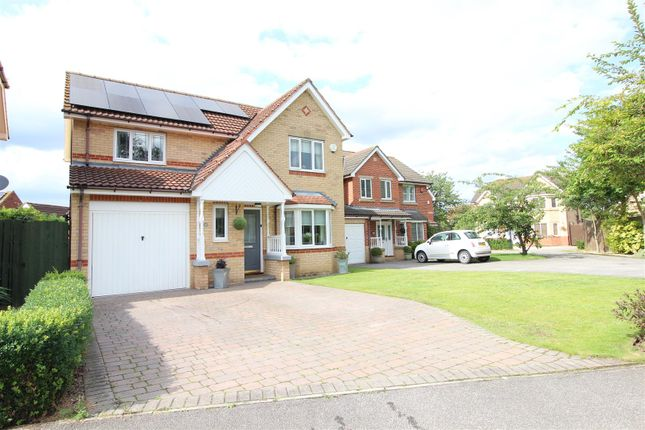 Thumbnail Detached house for sale in 43 Wisteria Drive, Healing, Grimsby, North East 7JbDN41 Lincolnshire