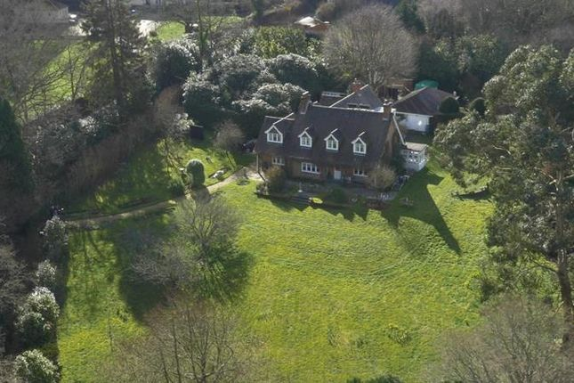 Thumbnail Country house for sale in Shobley, Ringwood