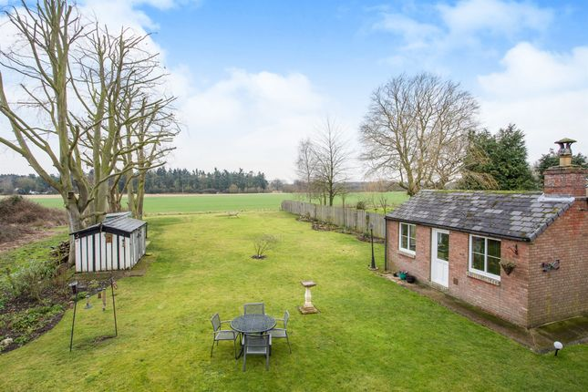 Thumbnail Detached house for sale in Vicarage Road, Foulden, Thetford