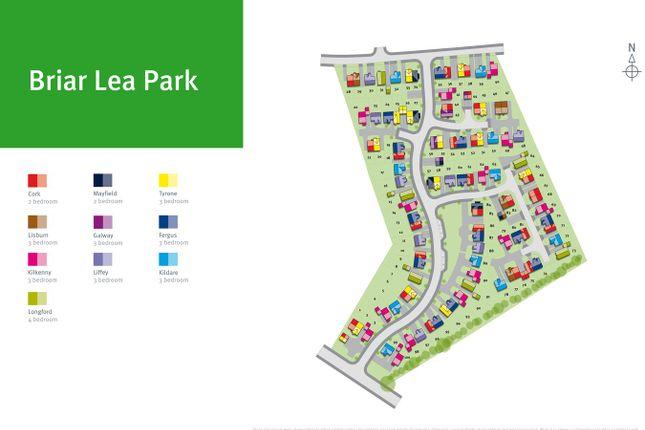 Site Map of Plot 98, Kilkenny, Briar Lea Park, Longtown, Carlisle CA6