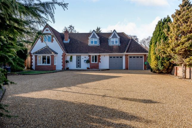 Thumbnail Property for sale in Heath Road, Thorpe End, Norwich