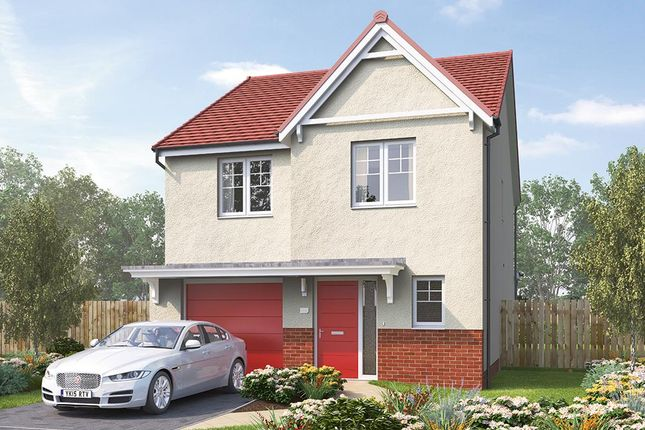 """Thumbnail Detached house for sale in """"The Holbury"""" at Aurs Road, Barrhead, Glasgow"""