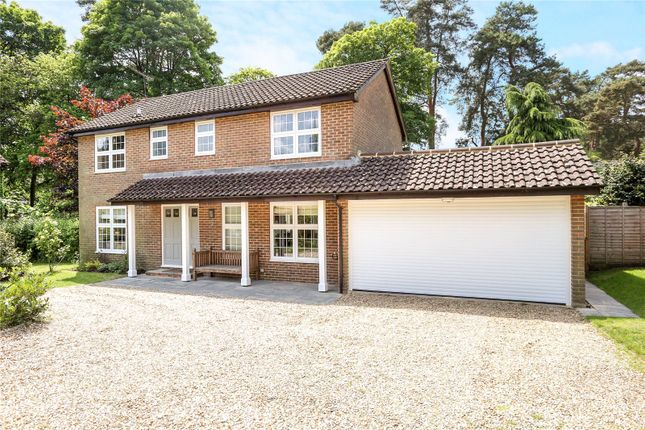 Thumbnail Detached house for sale in Annandale Drive, Lower Bourne, Farnham, Surrey