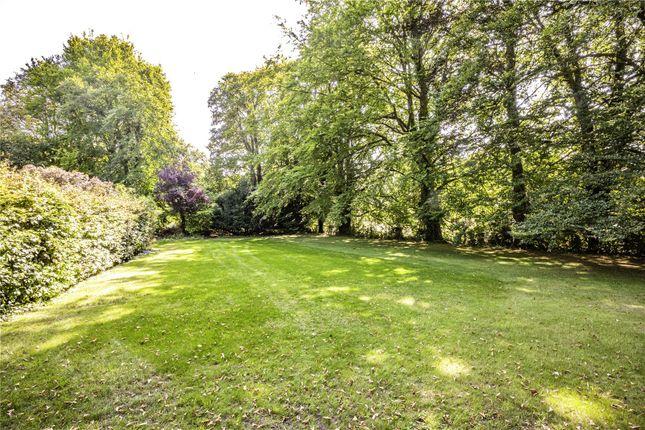 Garden of Icknield Road, Goring, Reading RG8