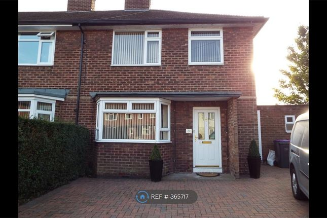 Thumbnail Room to rent in Victoria Park, Newport