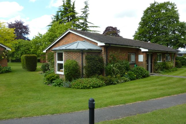 Thumbnail Semi-detached bungalow to rent in Headbourne Worthy House, Headbourne Worthy, Winchester, Hampshire