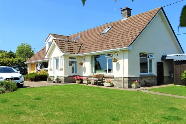 Thumbnail Detached bungalow for sale in Burrington, Umberleigh