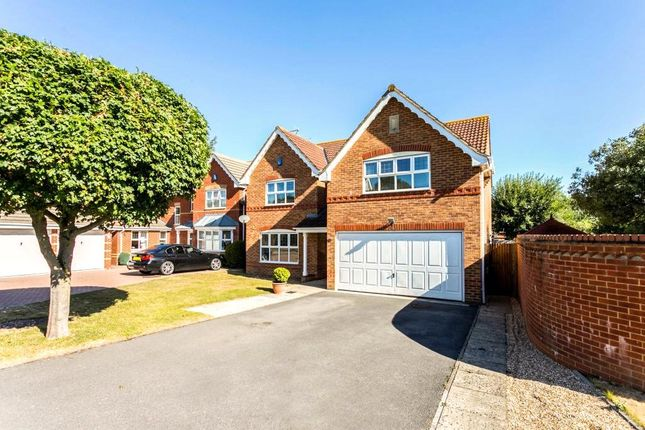 Thumbnail Detached house for sale in Crabtree Way, Old Basing